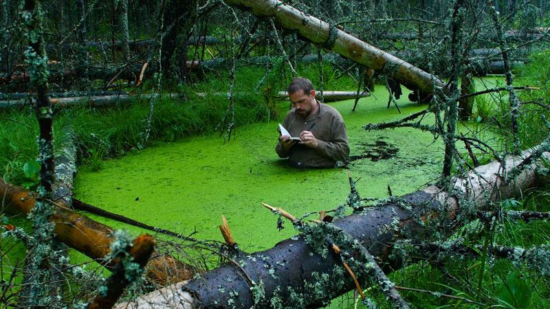 Ein Mann steht in einem mit grünen Algen bewachsenen Teich und schreibt in ein Notizbuch. Um ihn herum liegen tote Bäume.