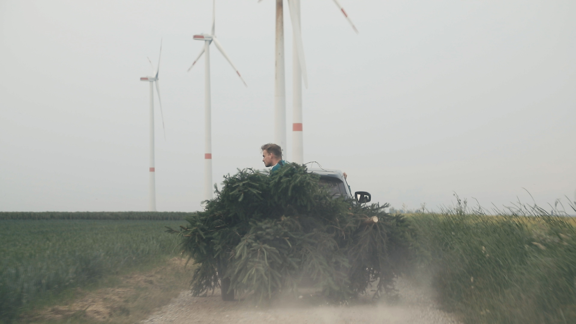 Ein junger Mann sitzt auf einem Auto mit Tannenbäumen. Er fährt in Richtung Windräder, die auf einem Feld stehen.