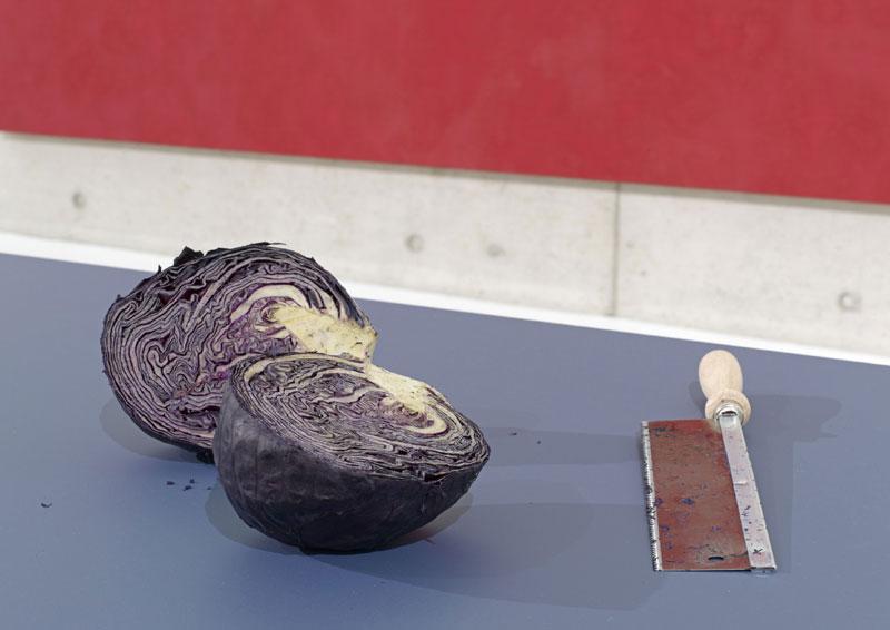 Aufgeschnittener Rotkohl auf einem Tisch. Daneben ist eine Handsäge platziert.